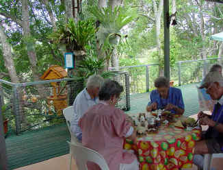 Dine at rainforest cafe in northern nsw
